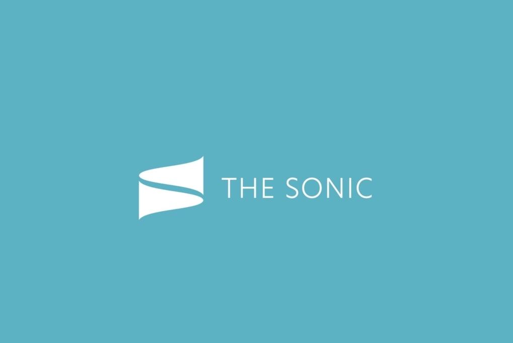 WordPress(ワードプレス)テーマTHE SONICのパクリ対策(1)