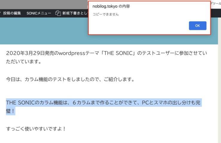WordPress(ワードプレス)テーマTHE SONICのパクリ対策(5)