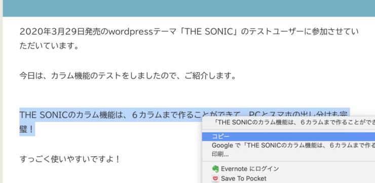 WordPress(ワードプレス)テーマTHE SONICのパクリ対策(4)